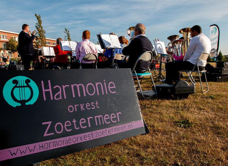 Harpe Davids HARMONIE